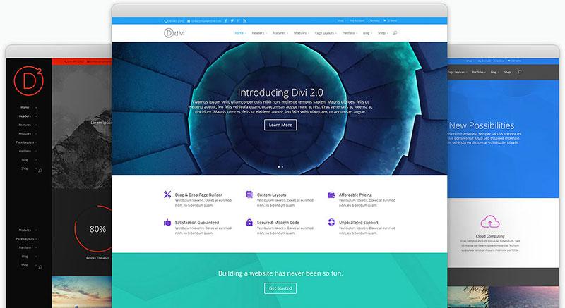 Divi Premium One Page WordPress Theme