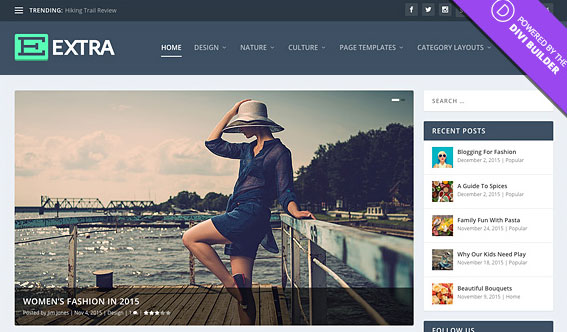 Extra Premium Paid WordPress Magazine Theme