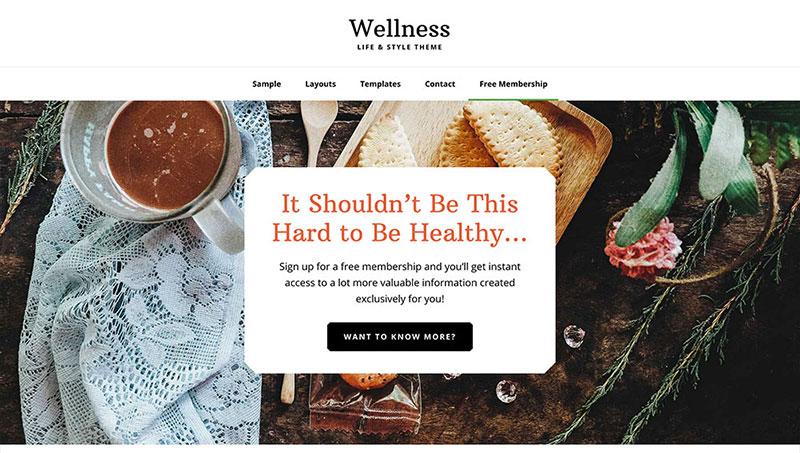 Wellness Pro Premium One Page WordPress Theme